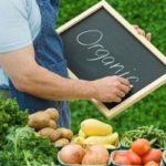 Кутовий: органічне виробництво в Україні має величезний експортний потенціал